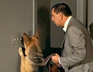 Drug-sniffing dog Ginger and supercop Joe Friday from Dragnet